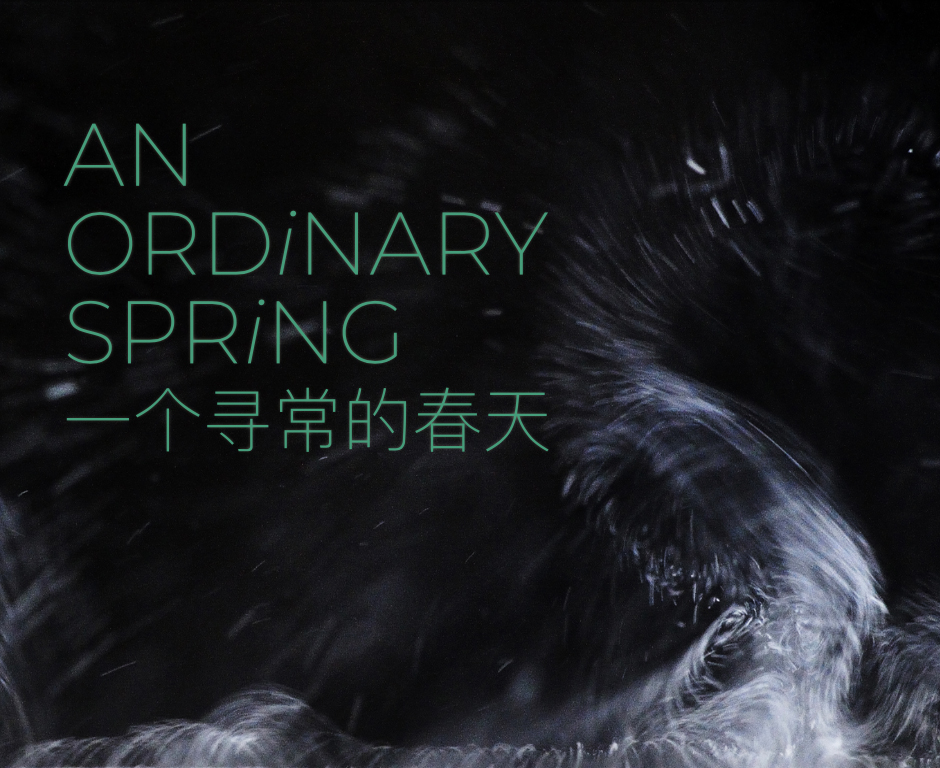 Eventbild für Zhang Qiwei /// An ordinary spring