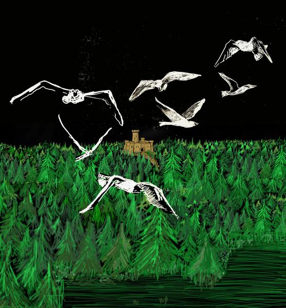 Eventbild für Nikola Dicke /// Lichtkunst /// Auf wundersamen Flügeln