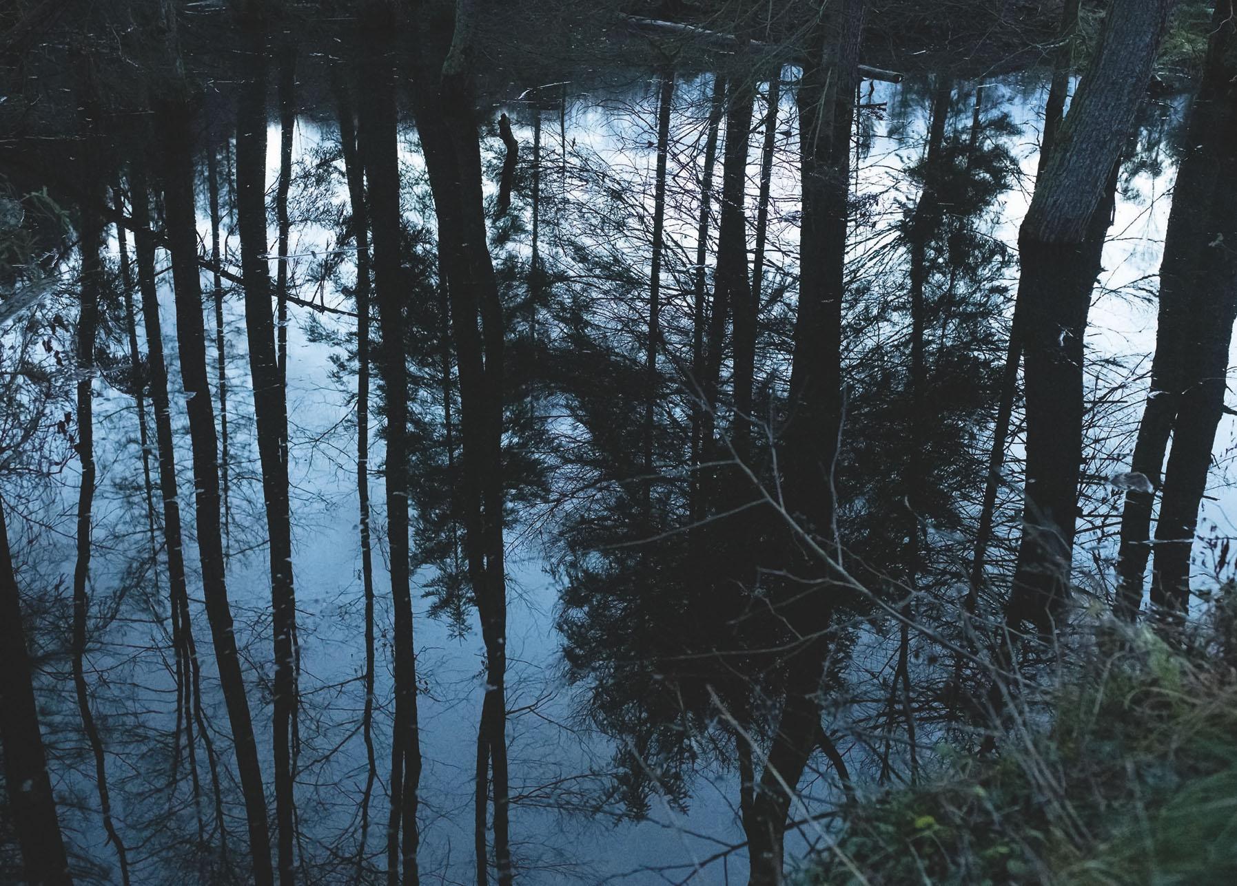 Eventbild für Javkhlan Ariunbold und Jörg Kratz /// Im schwarzen Tor des Waldes