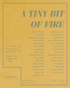 Eventbild für Gruppenausstellung mit Jonas Hohnke u.a. /// A tiny bit of fire