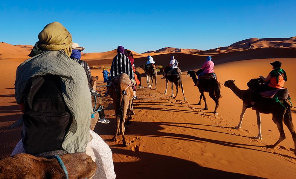 Kamelritt bei einer Exkursion nach Marokko
